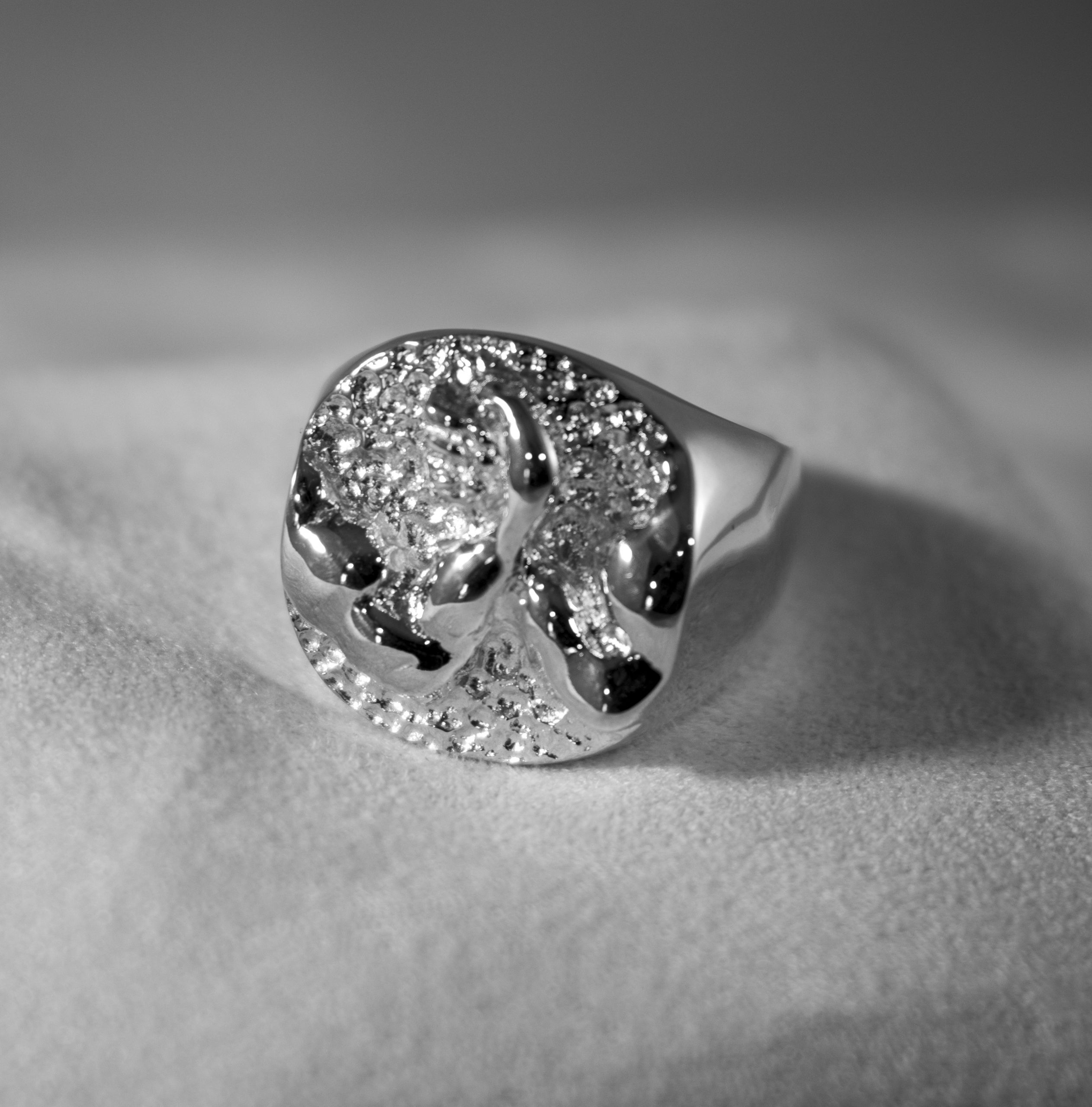 AWC Rocky Mountain Ring - Silver on white cloth