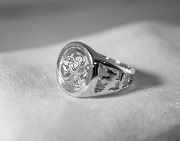 AWC Canada Pride Ring - Silver on white cloth